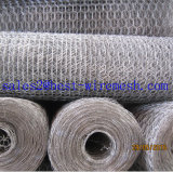 Плетение провода Coated обратной закрутки Galvanized/PVC шестиугольное, сетка мелкоячеистой сетки нержавеющей стали
