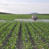 Fertilizante del polvo el 52% del aminoácido