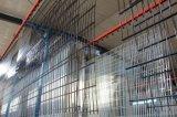 Rete fissa galvanizzata ricoperta PVC della rete metallica/doppio recinto di filo metallico del ferro (XMS45)