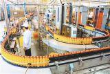 Chaîne de production remplissante de boisson d'animal familier de jus semi-automatique chaud de bouteille