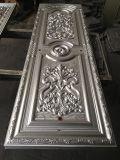Plaque de porte moulée par acier pour la porte de garantie