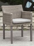Moderno al aire libre de la rota / silla de mimbre (LN-2000W)