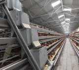 電流を通された鶏の繁殖の農業機械電池の層のケージ