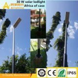 1개의 옥외 LED 태양 가로등 운동 측정기 홈 빛에서 높은 루멘 전부