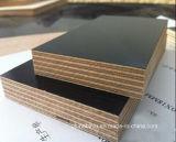 18mm Blabck/film de Brown a fait face au contre-plaqué pour le matériau de construction
