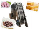 Linea di produzione del biscotto della cialda del cioccolato Sh39gas