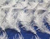 Fios de leite Bordados Feather Lace roupas para as mulheres têxteis