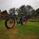 bicicleta elétrica do pneu 26inch gordo para a senhora