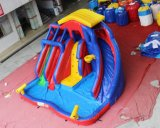 Bunter Hinterhof-aufblasbares Wasser-Plättchen für Kinder Chsl367