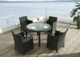 Jardín al aire libre Ultravioleta-Resistente de los muebles que cena la silla y el vector determinados (Yta020-1&Ytd322_ del patio