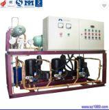 La vis de l'unité de réfrigération du compresseur parallèle à mouvement alternatif de CO2 pour basse température de congélation de fréon