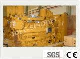 Fourni en usine grande puissance refroidis par eau/ Gaz naturel/Biogaz Biomasse générateur de puissance (10kw-2MW)