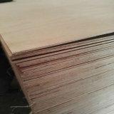Núcleo do choupo Madeira contraplacada comercial para mobiliário de alta qualidade produzem