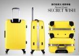 中国の製造所アルミニウムカバー荷物旅行荷物袋のパソコンの荷物のトロリー荷物のスーツケース