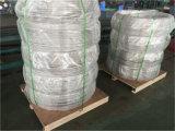 """1/4 """" * tubo de la bobina 316L con alta calidad y los mejores precios"""