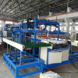 Ps-schäumender Mittagessen-Kasten, der Maschine/schäumende Plastikmaschine herstellt