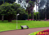 1つの統合されたLEDの太陽中庭の庭の街灯のすべて