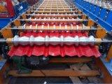 لف باردة يشكّل آلة الصين صاحب مصنع