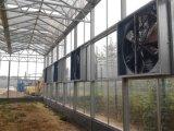 온실 배기 엔진 또는 온실 기후 통제 시스템