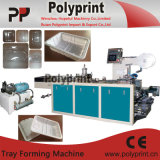 Plastikei-Tellersegment, welches die Formung der Maschine bildet