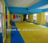 Stuoie di Tatami di collegamento di ginnastica di karatè delle stuoie MMA del pavimento del puzzle di arti marziali di EVA