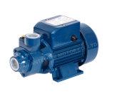 Qualität Surface Domestic Peripheral Water Pump mit CER (QB-60)