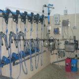 回転式パイプラインタイプされた搾り出す機械システム