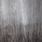 ヤナギの木の効果によって印刷されるのどPVCスポンジ袋の革