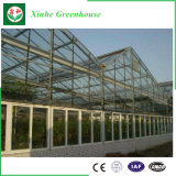Invernadero de cristal de la agricultura inteligente para plantar