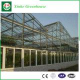 Agricultura inteligente para o plantio de estufa de vidro