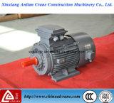 Motor trifásico elétrico do guindaste da C.A. de VFD