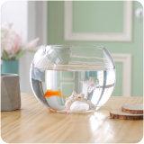 Ciotola di vetro dei pesci del mini acquario rotondo durevole