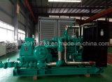 Горячие продажи природного газа/дизельного генератора (K19G-G330) с двигателя Cummins