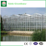 植わることのための情報処理機能をもった農業のガラス温室