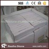 Marfil/Berccia crema Sarda Marble Composite Stone Flooring Tile con Backing Porcelain/Ceramic