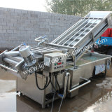 Máquina da limpeza vegetal da batata do aço inoxidável