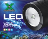 Lâmpada LED Marinhos Shanda Reef Coral luz LED XL-01 Aauarium/Luz de stop