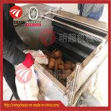 Máquina de casca raspando da máquina do nabo da cenoura da batata do aço inoxidável