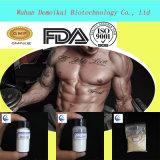 Acheter Ostarine Sarms poudre/MK-2866 pour Bodybuliding Supplyment