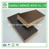 La película caliente de la venta de Shengze hizo frente a la madera contrachapada
