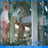Pecore Abattoir Slaughter Equipments da vendere