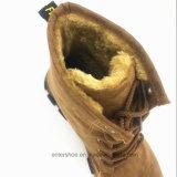 Средний-Икра шнурует вверх повелительницу теплые ботинки замши (ET-CH160271W)