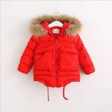 冬のコートのための毛皮カラーが付いている女の子のCotton-Padded衣服