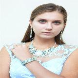 Nuevo conjunto de la joyería del collar de la pulsera del pendiente de la joyería de la manera de la resina de la flor del item