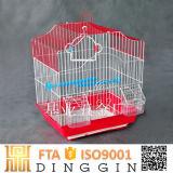 La memoria de las aves de jaula de jardín en venta