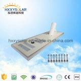 Fornecedor todo de China em uma lâmpada solar da luz de rua do diodo emissor de luz (HXXY-ISSL-100)
