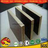 Película impermeável preto/castanho enfrentados/ Marine/concreto/ Cofragem/contraplacado para construção
