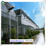 Folha de PC Span vários gases com efeito de sistema Aquaponic Green House