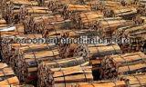 Divisore di legno diesel idraulico portatile