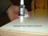 madera contrachapada colorida laminada del laminado de la alta presión de 18m m HPL/Compact del surtidor profesional